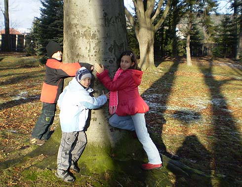 Strom jako hrom ...